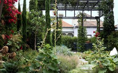 Urban sanctuary: A rambling inner-city garden