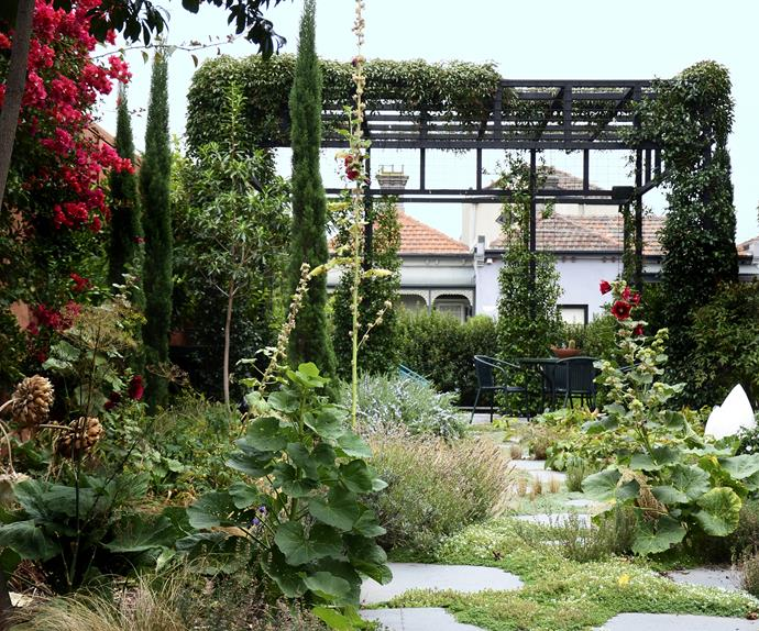 Pavers and a pergola covered in lush green plants