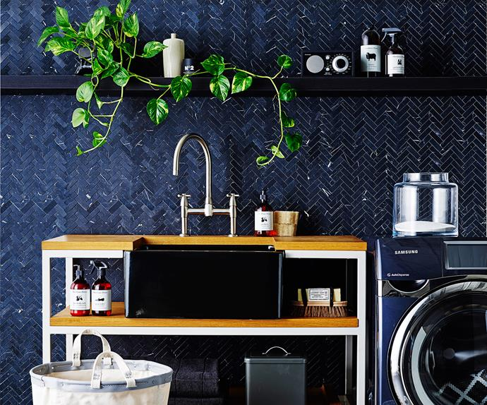 Dark laundry with wooden shelves and plant