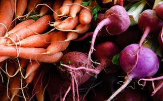 Homegrown carrots and beetroots