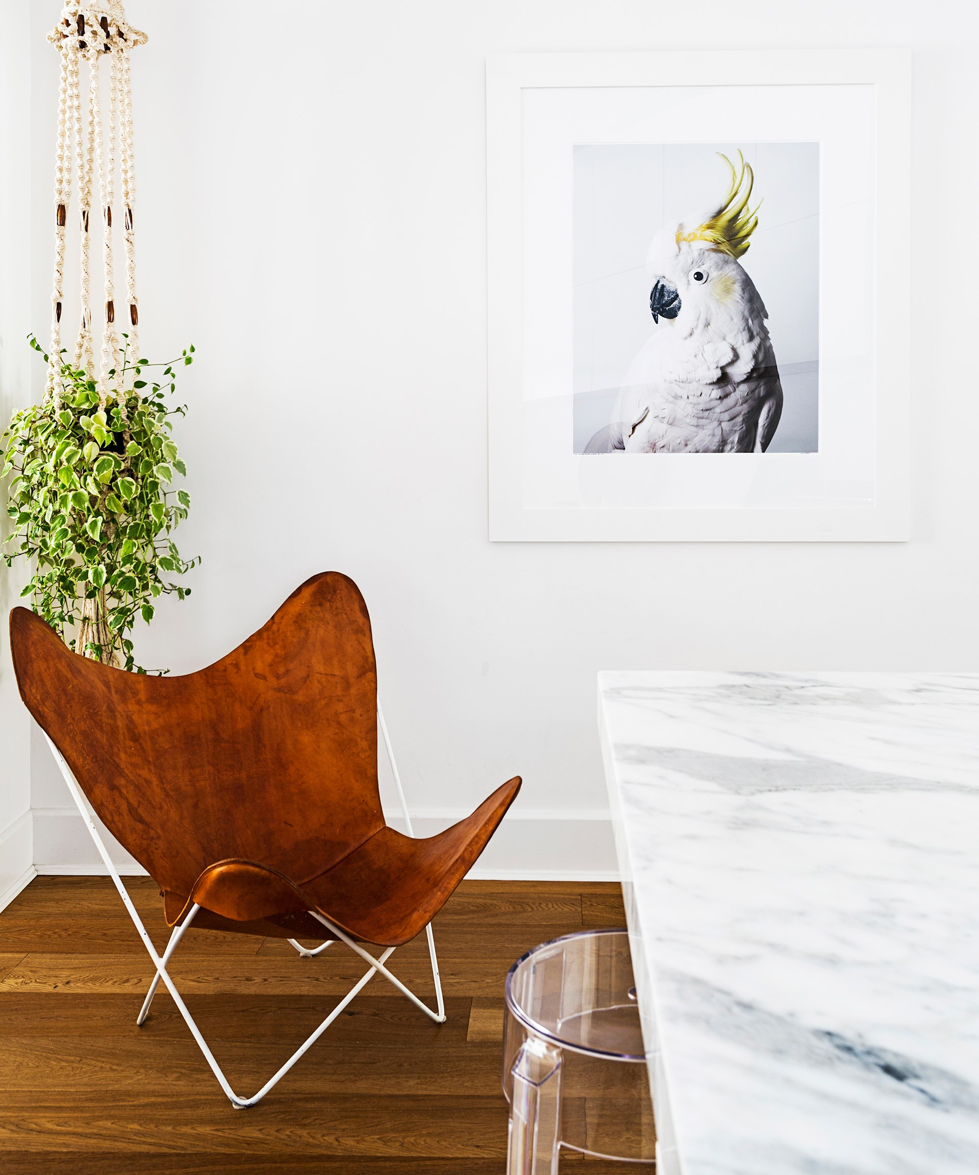 "An unruly ivy plant in a macramé hanger introduces a little boho to this [Bondi bungalow](http://www.homestolove.com.au/gallery-romy-alwills-budget-conscious-renovation-1963|target=""_blank""). Photo: Felix Forest / *real living*"