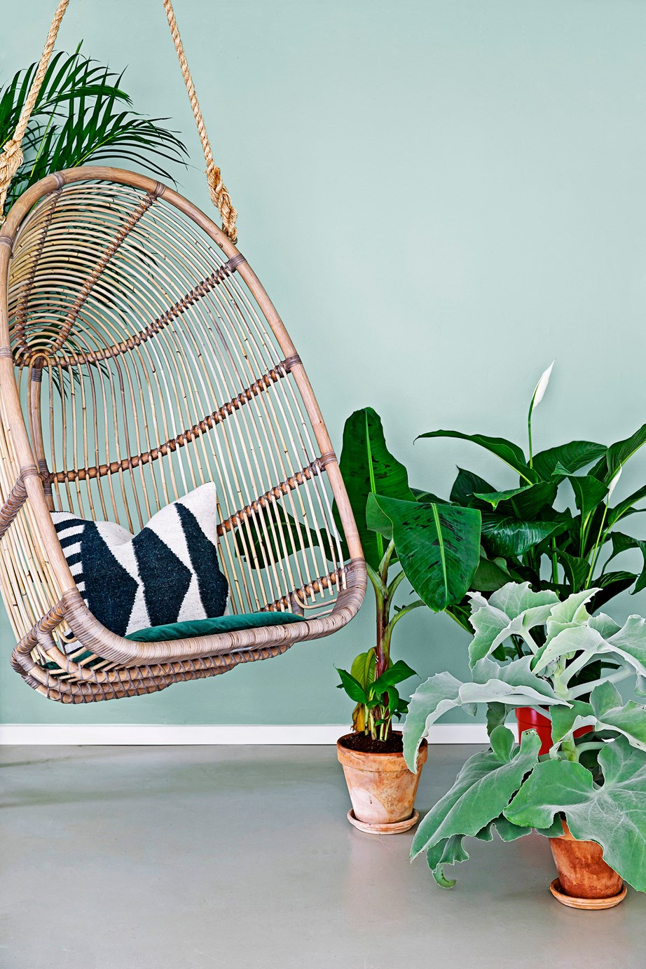 "[Indoor plants](https://www.homestolove.com.au/the-best-indoor-plants-for-australian-homes-2003|target=""_blank"") will not only make your house feel tranquil, they purify the air by clearing out toxins and increasing oxygen."