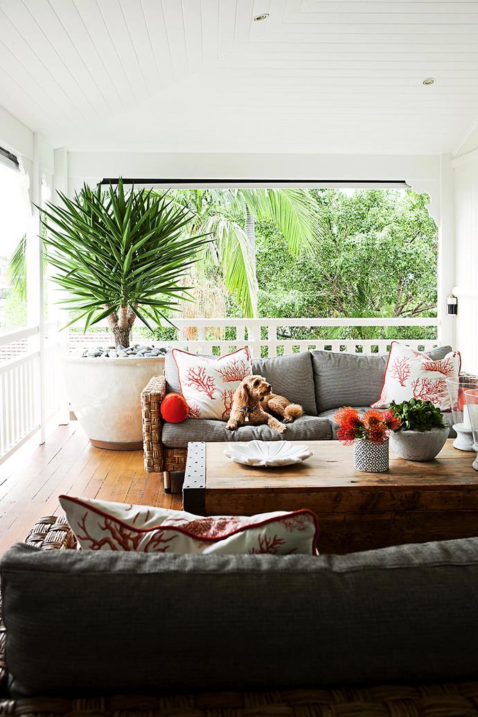 "This verandah, located at the north-east corner of a Brisbane home, has been turned into a cosy sitting nook by interior designer Leigh Boswell from [Highgate House](http://www.highgatehouse.com.au/?utm_campaign=supplier|target=""_blank""). The tangerine Coral Gables acrylic fabric on the custom **cushions** is by [Thibaut](http://www.thibautdesign.com/?utm_campaign=supplier