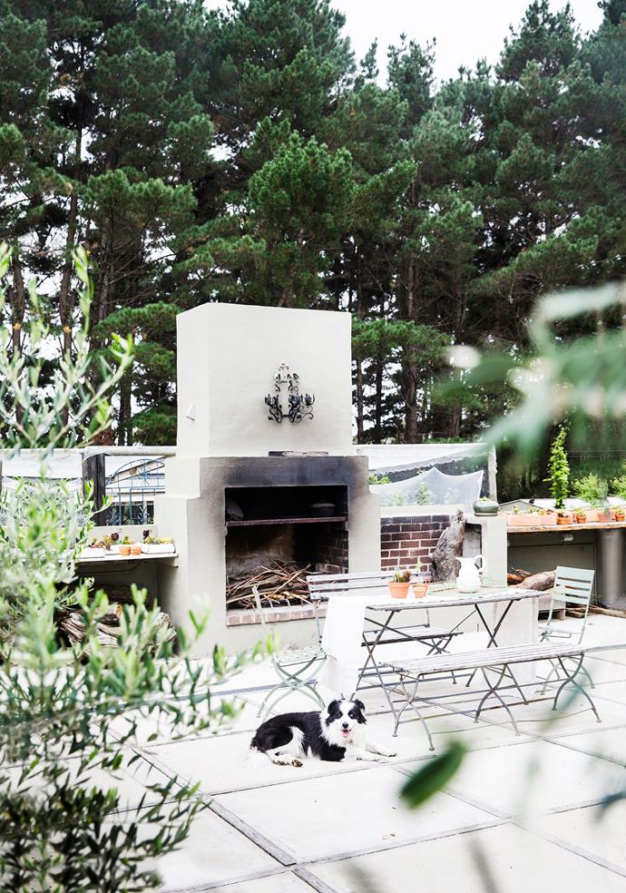Raffles relaxes in this wonderfully positioned outdoor kitchen, which accommodates a brick fireplace, a spit and barbecue. Kevin made the floor from old hardwood and poured concrete, after Brigid admired a similar style in a magazine.