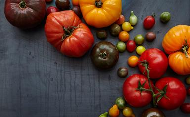 How to grow tomatoes like a pro
