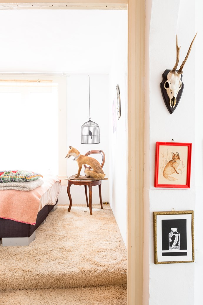"""Menne's penchant for taxidermy is evident in the bedroom. """"My biggest desire is to buy a stuffed flamingo!"""" he says."""