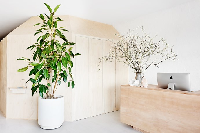 "**Good Vibes** Local cabinetmaker Vince Conboy of [Cenzo](http://cenzo.net.au/?utm_campaign=supplier/|target=""_blank"") made the solid timber reception desk. Photo: Brooke Holm."