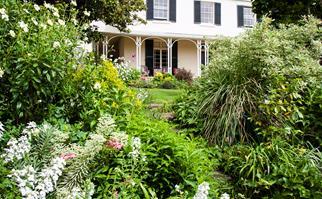 Launceston garden