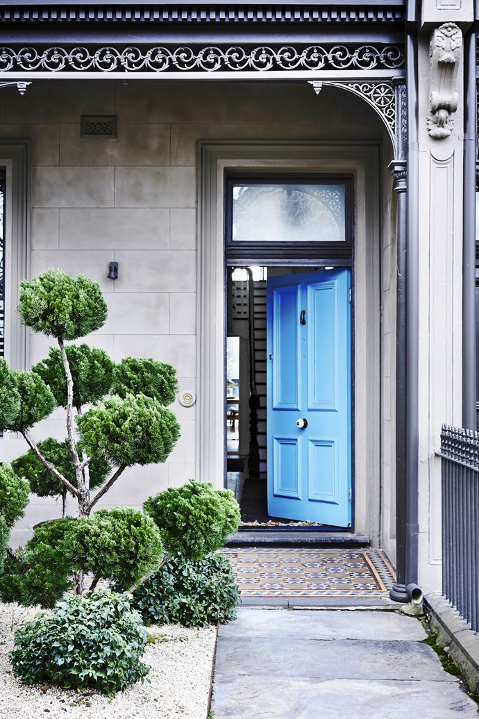 """The elegantly sculpted Chinese juniper and front door painted in [Porter's Paints](http://www.porterspaints.com?utm_campaign=supplier/