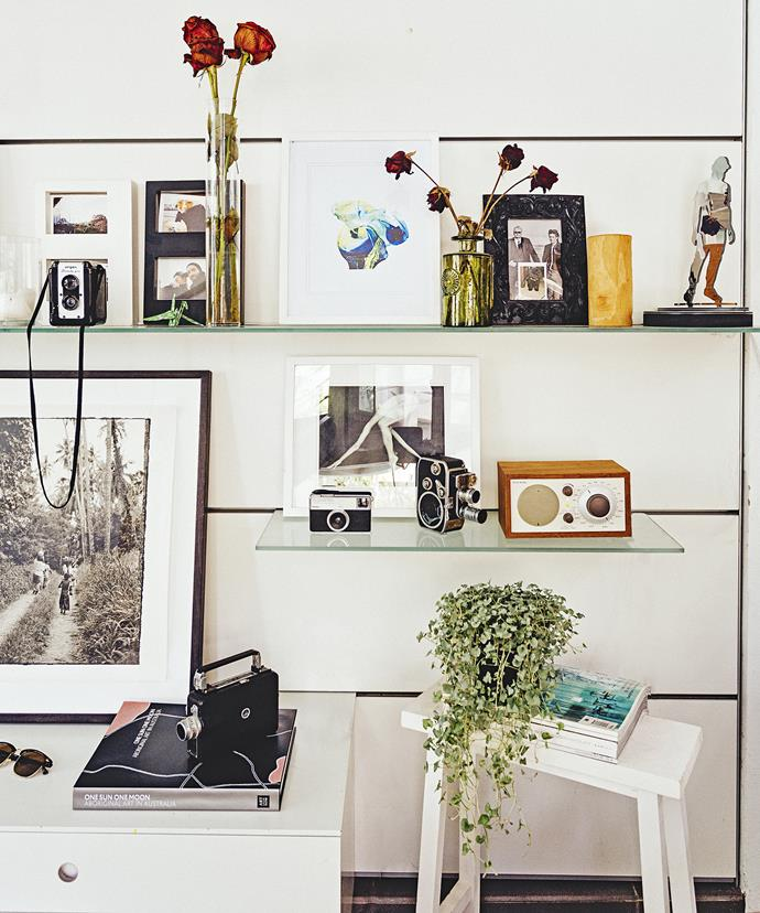 Ted's love of vintage cameras and Vicki's love of flowers combine on the shelves in the living room.