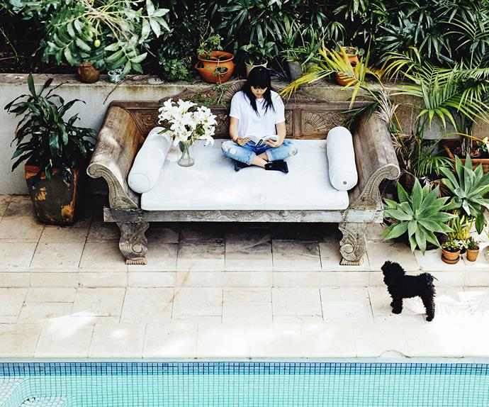 Artist Vicki Lee relaxes by the pool with her dog