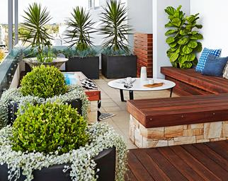 balcony garden Sydney