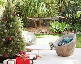 real christmas tree care