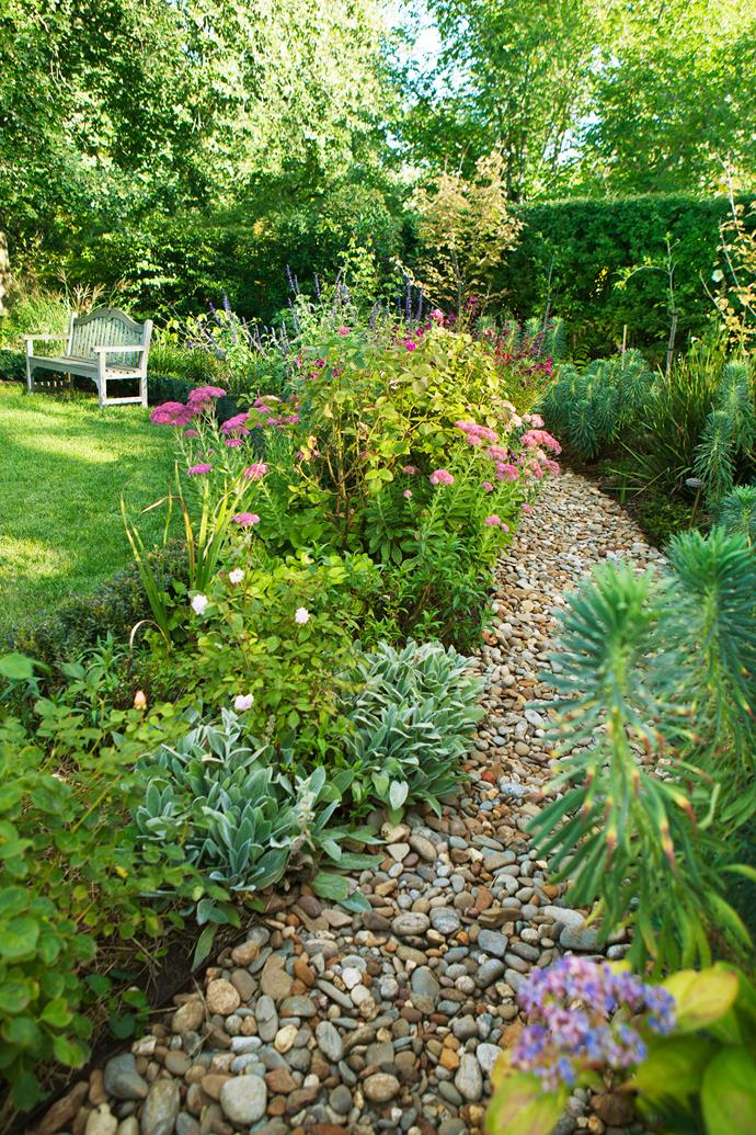 Euphorbia, silver lambs' ears and the pink flowers of *Sedum* 'Autumn Joy' bring a melange of texture to the bordering beds; foxgloves, *Nandina domestica* 'Moonbay', *Agastache* 'Sweet Lili', *Clivia miniata* also make up these beds.