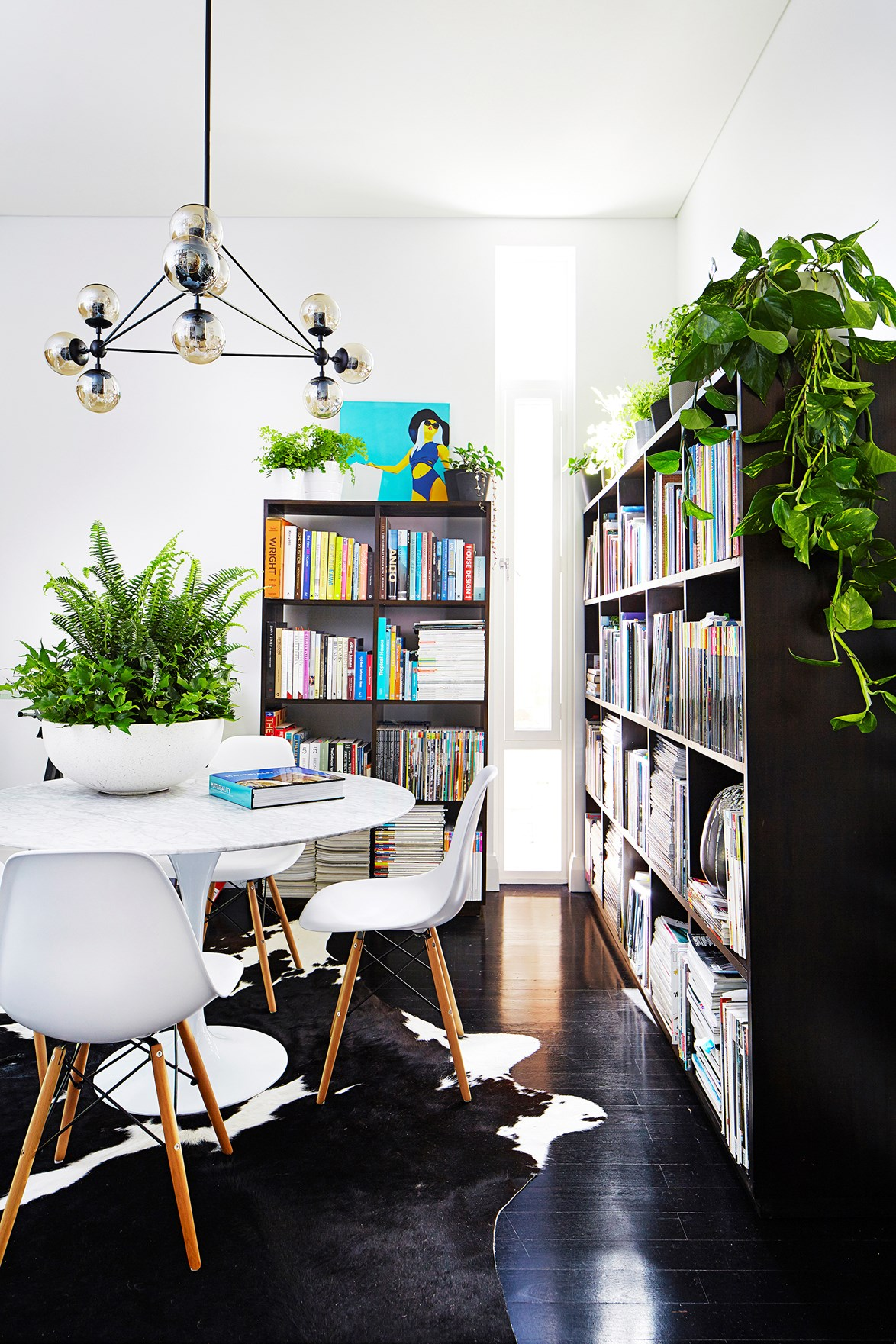 If you're short on floorspace, drape devil's ivy over a bookcase to create a lush display.