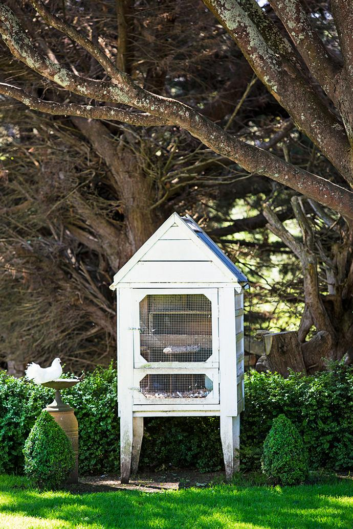 A dovecote among the greenery provides a cosy home for a flight of doves.