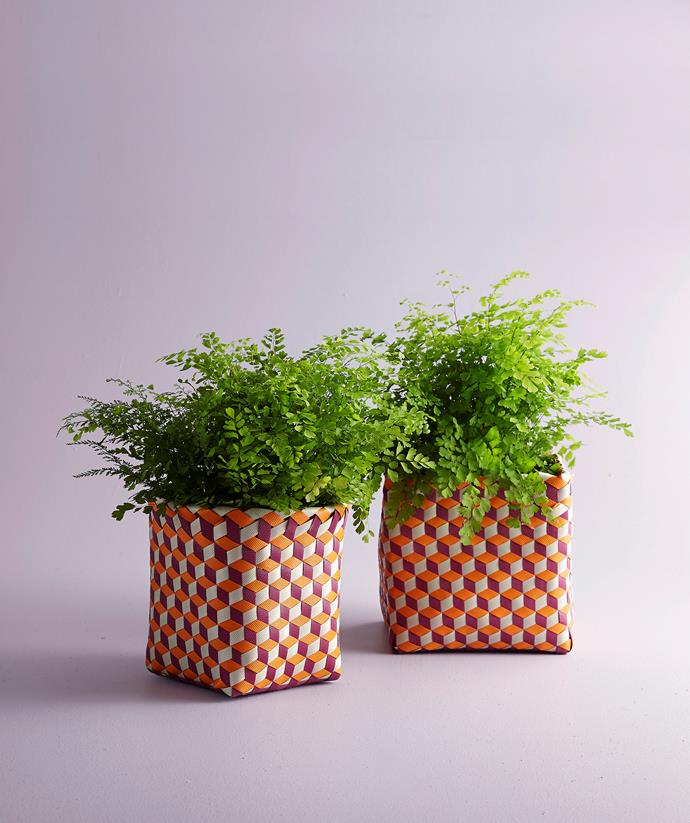 These red woven-plastic storage boxes are perfect for indoor plants and make a colourful Christmas gift.