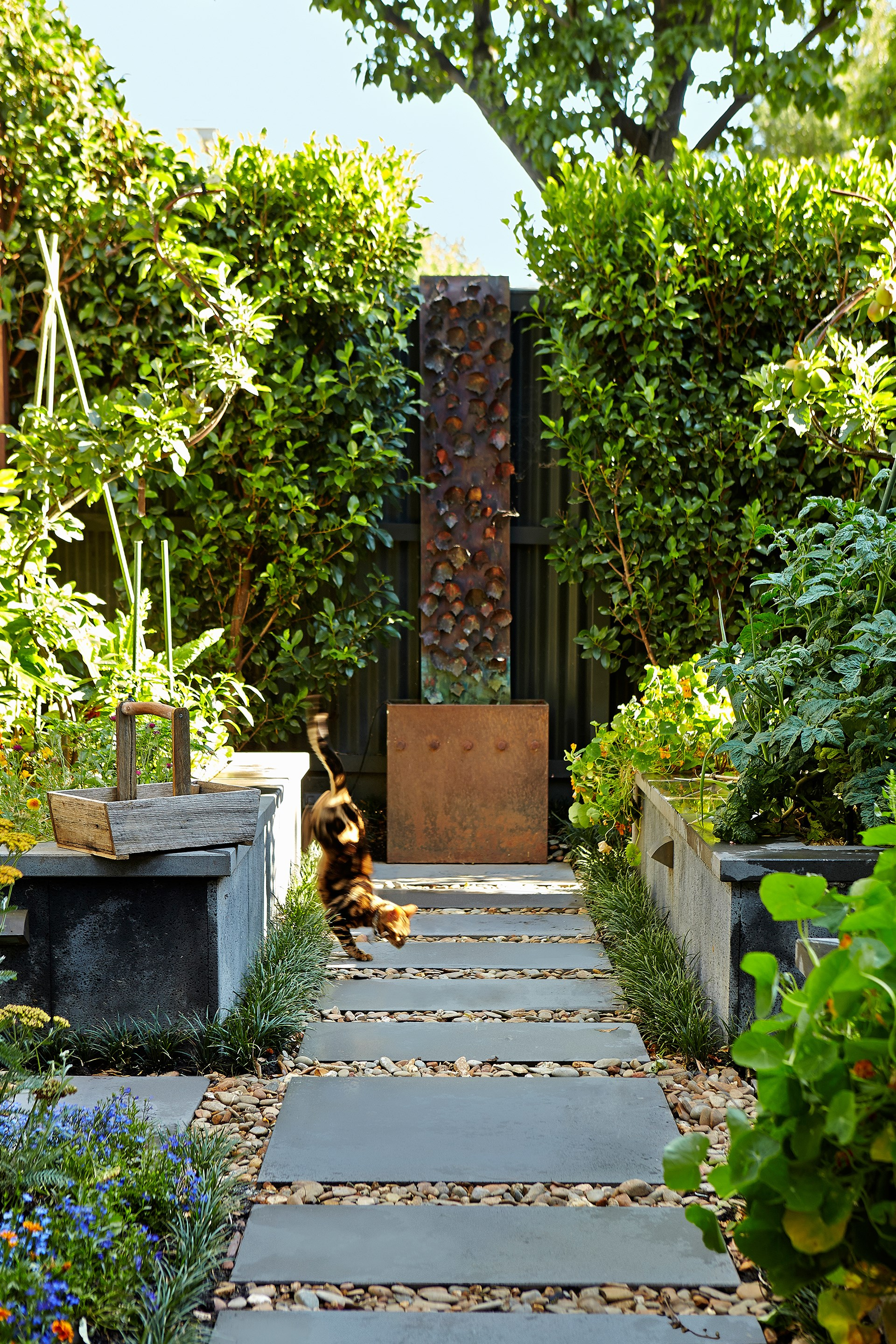 "Sustainability is at the forefront of this [Melbourne garden](http://www.homestolove.com.au/gallery-caecilia-and-james-sustainable-suburban-oasis-1488|target=""_blank""), which includes a spectacular naturally filtered pool and raised vegetable beds handy to the kitchen."