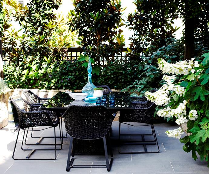 "The oak leaf hydrangea featured in this [leafy courtyard](http://www.secretgardens.com.au/portfolio/courtyard-garden-potts-point/?utm_campaign=supplier/|target=""_blank"") has gorgeous flowers that you can cut and enjoy inside."