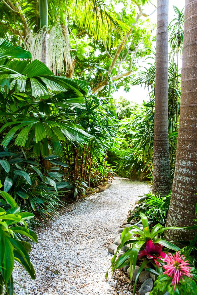 Towering palms and vast thickets of tropical plants stretch out in every direction, giving the impression that the garden occupies a luxurious tract of natural rainforest.