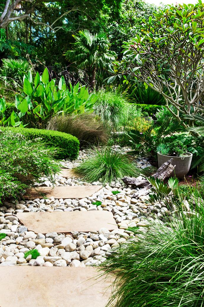 The lower garden, near the frog pond, is planted with *Lomandra shara*, *Baeckea* 'Mount Tozer' and *Buxus*.