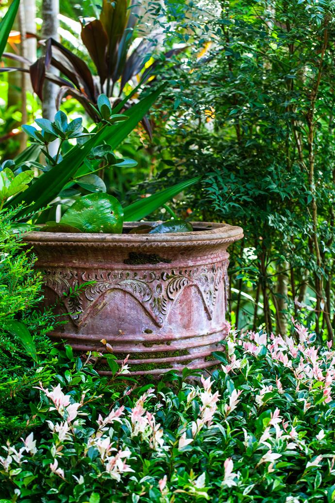 An antique Balinese water pot is in keeping with the tropical feel of the garden.