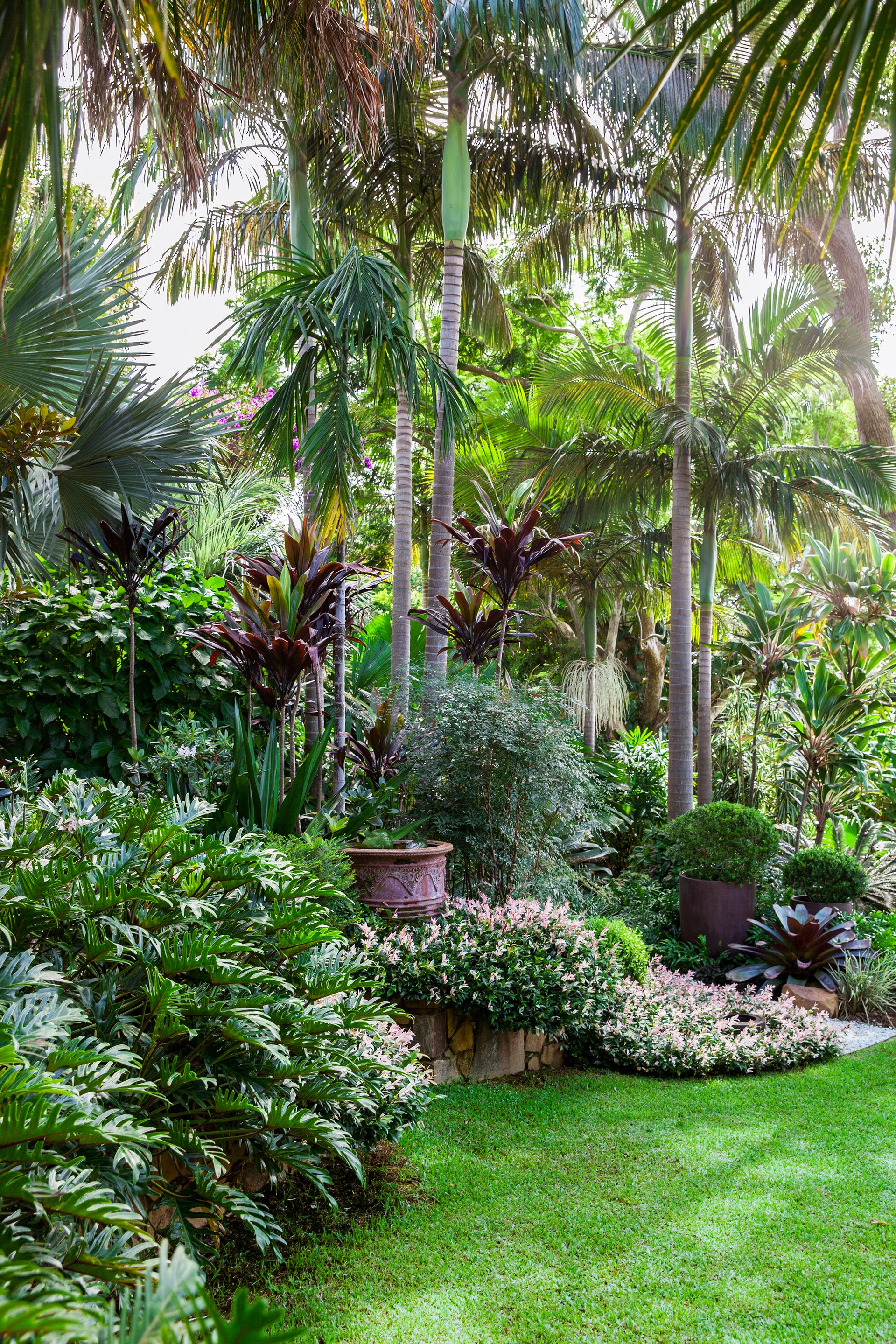 "Working with a large sloping site, landscape designer Claudia Nevell [shaped a many-layered tropical wonderland at her home on the NSW North Coast](http://www.homestolove.com.au/a-tropical-oasis-on-the-nsw-north-coast-2802|target=""_blank""). Towering palms and vast thickets of tropical plants stretch out in every direction, giving the impression that the garden occupies a luxurious tract of natural rainforest."