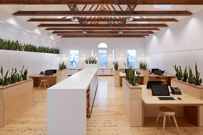 The offices illustrate the brand's commitment to sustainability, quality, and craftsmanship. Photo: Peter Clarke