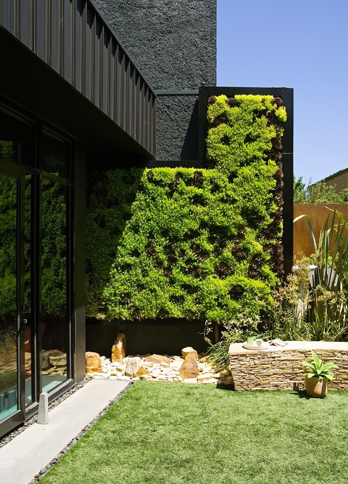 Using plants as screens or living wall features adds texture (touch) and visual interest (sight).
