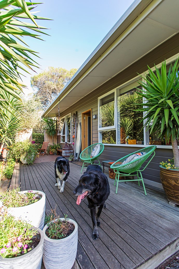 "The outdoor **green chairs** were sale buys from [Adairs](https://www.adairs.com.au/?utm_campaign=supplier/|target=""_blank""). ""I love the colour and their retro style suits the house,"" Judy says."
