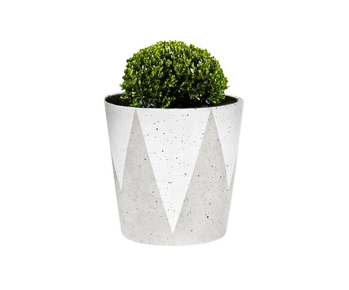 """Zola concrete-look **planter** in white, $40, [Freedom](http://www.freedom.com.au/?utm_campaign=supplier/