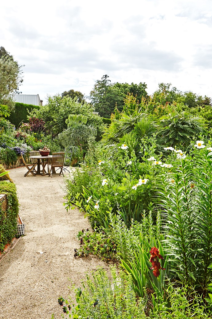 Visiting Kate Herd's garden is like stepping into a little bit of paradise. Full of unusual and incredibly beautiful plants, it's been arranged in a way so that every tree, hedge and plant is shown off to its best advantage.