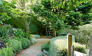 Melbourne acreage transformed into haven of greenery