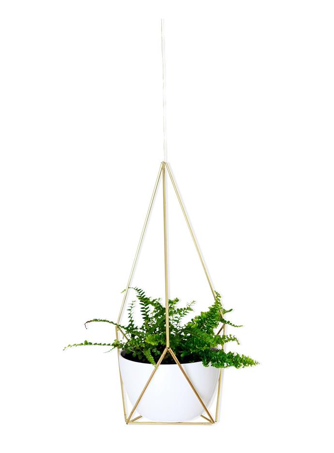 "Boston fern in Himmeli hanging planter, [Nalle's House](www.nalleshouse.com/?utm_campaign=supplier/|target=""_blank"")."