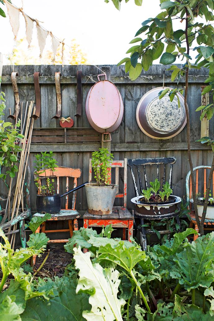 """Old chairs and tubs have been repurposed as planters in [this extraordinary edible garden](http://www.homestolove.com.au/family-affair-handg-edible-and-sustainable-garden-of-the-year-winner-3171 target=""""_blank"""")."""