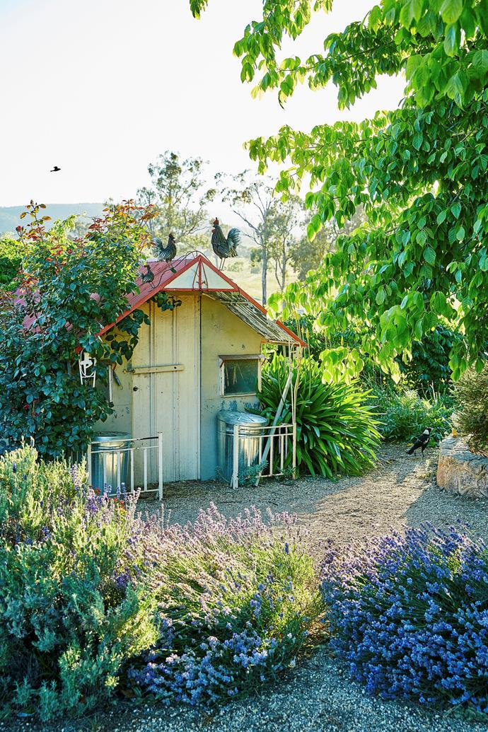 "Take a tour of the [fragrant, flower-filled garden of Janet Lucas](http://www.homestolove.com.au/palette-pleaser-h-g-pretty-garden-of-the-year-winner-3151|target=""_blank""). Photo: Scott Hawkins / *Australian House & Garden*"