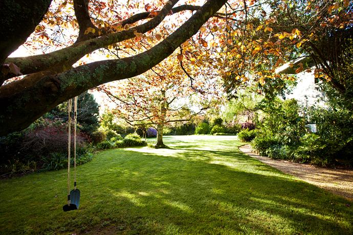 A grassy expanse in front of the house at Highfields has become 'the fairy lawn' in the imagination of the owners' seven-year-old daughter, Zara. This mature copper beech makes the perfect support for a swing.