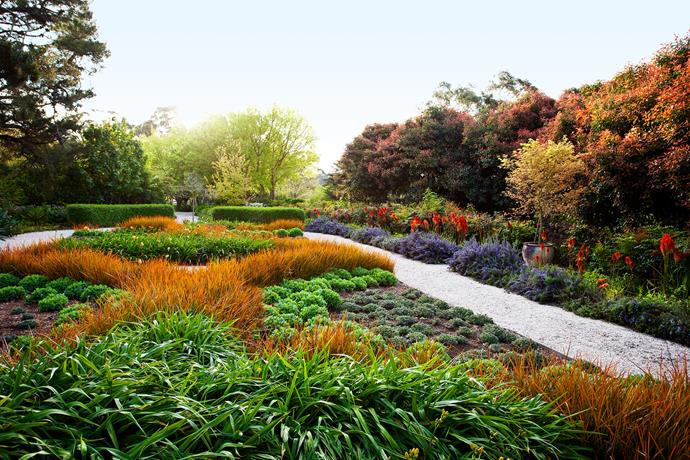 The Mediterranean-style dry garden abounds in rich textural and colour contrasts.