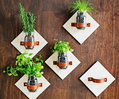 DIY jar kitchen herb garden