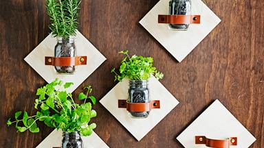 DIY jar kitchen herb garden