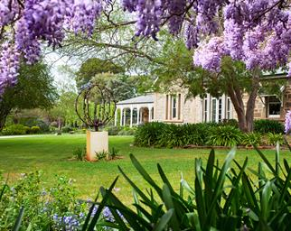 South Australian garden that bristles with life