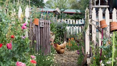 7 ways to repurpose household items in your garden