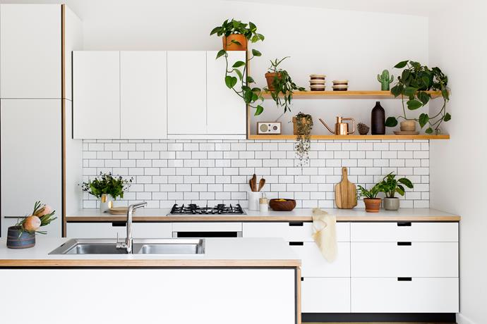 "Open shelving is a fashionable feature in [Cantilever Interiors'](http://www.homestolove.com.au/a-happy-medium-furniture-designers-create-affordable-kitchens-2228|target=""_blank"") kitchens. Photo: Martina Gemmola"