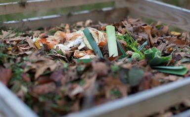 How to create a homemade compost bin