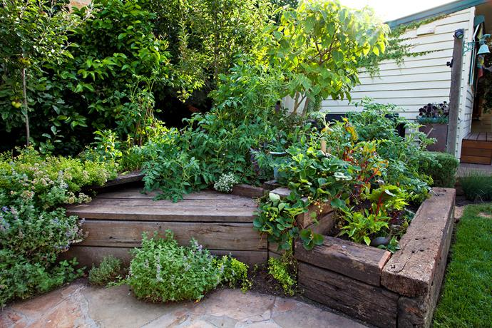 Timber boxes built into the deck, described by Hendrik as his 'salad bars', are filled to overflowing with lettuce and herb combinations.