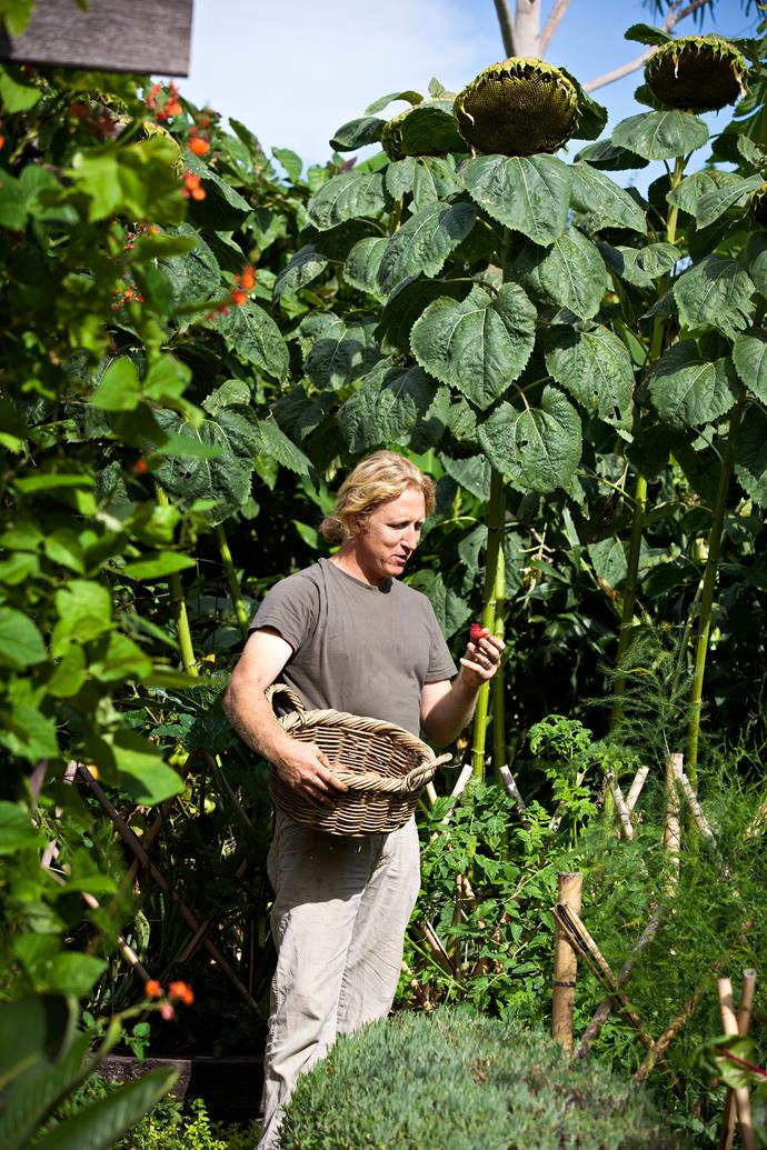 """Hendrik, who runs his own garden design business [Van Leeuwen Green](http://www.vanleeuwengreen.com/?utm_campaign=supplier/