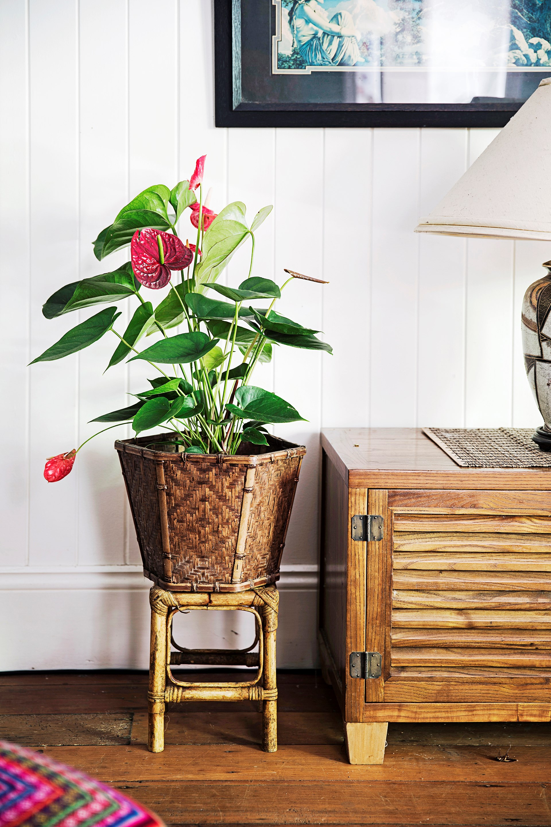 **Planters -** Indoor plants displayed in wicker plant stands or woven baskets give off a retro-boho vibe in this [holiday-inspired Queenslander home](http://www.homestolove.com.au/old-is-new-again-in-this-revamped-queenslander-3532).