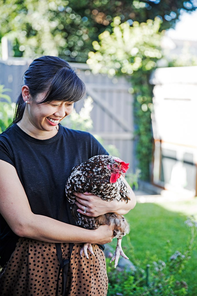 """Alice, the Speckled Sussex, is rather a star on Vanessa's Instagram feed, [@thehungrychook](https://www.instagram.com/thehungrychook/?utm_campaign=supplier/