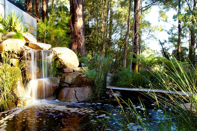 Water capture and conservation is what Olinda does best. Photo: Phillip Johnson Landscapes