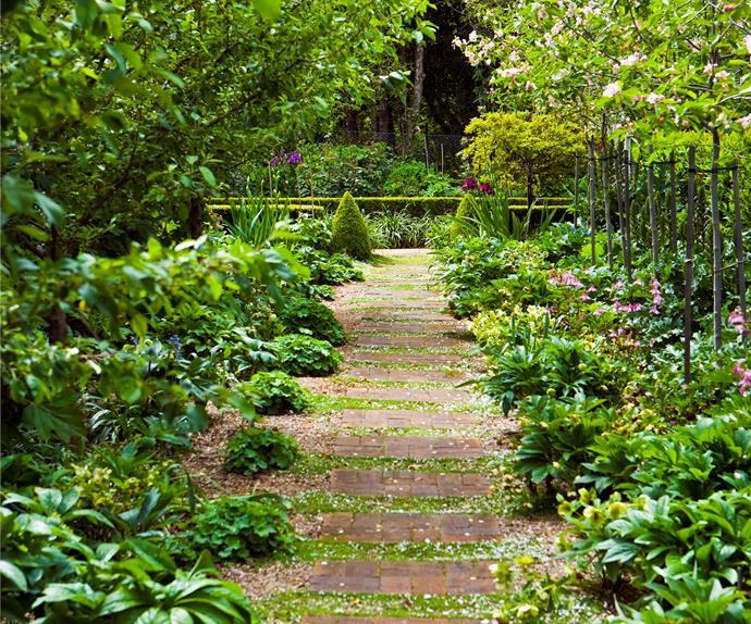 Layered garden full of visual interest
